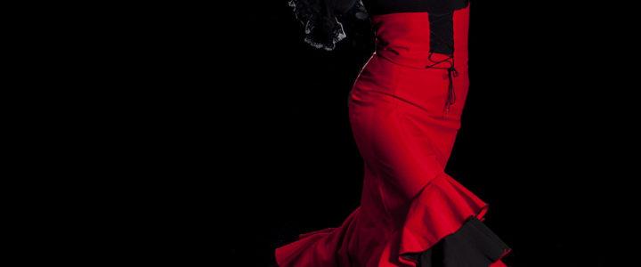 Il Flamenco a la Feria de Malaga