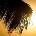Protezione per la pelle nella Costa del Sol