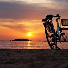 Vendesi attività di noleggio bicicletta a Malaga